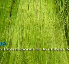 2009-Internacional-de-las-fibras-naturales